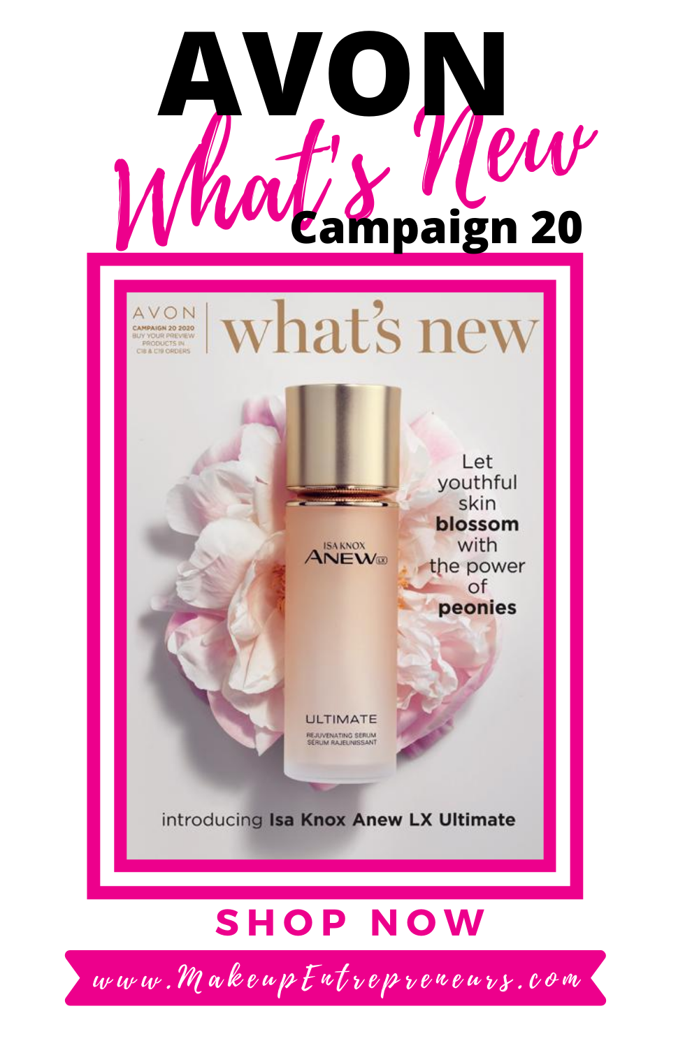 What's New AVON Campaign 20 2020 Brochure- Makeup Entrepreneurs